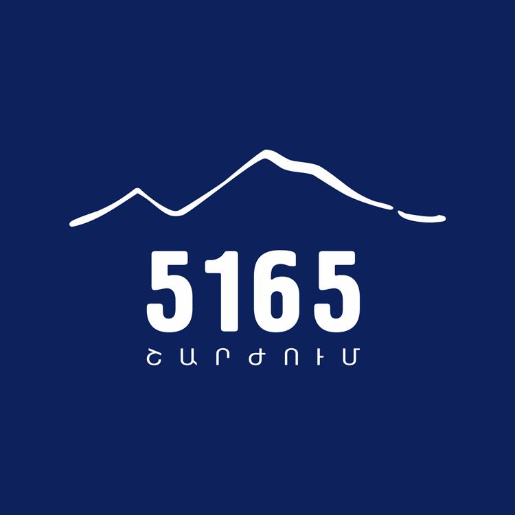 «5165 ազգային պահպանողական շարժում» կուսակցություն party logo